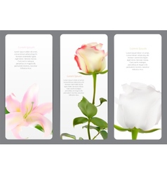 Beautiful floral cards with realistic flowers vector