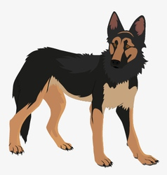 German shepherd fog vector