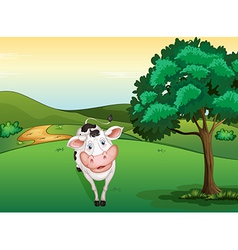 A smiling cow vector