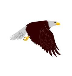 Bald eagle flying vector