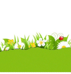 Green torn paper with flowers and grass vector