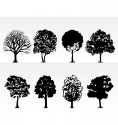 Park trees vector