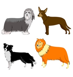 Breeds set vector