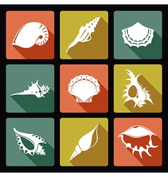 Shell flat icons1 vector