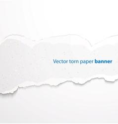 Torn paper banner vector