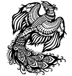 Phoenix black white vector