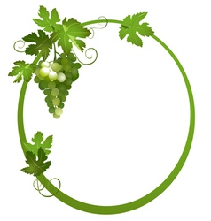 Oval frame with a bunch of grapes vector