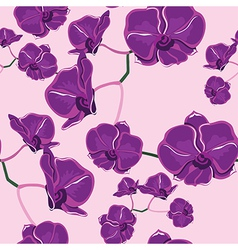 Seamless pattern with orchids hand-drawing vector