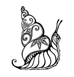Beautiful snail exotic insect vector
