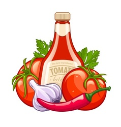 Bottle with tomato ketchup vector