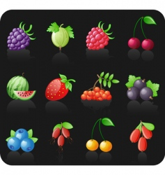 Berries black icon set vector
