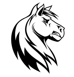 Silhouette of white horse vector