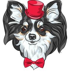 Cute hipster dog chihuahua vector