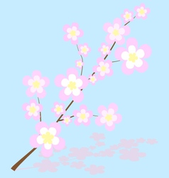 Abstract of sakura cherry blossoms vector