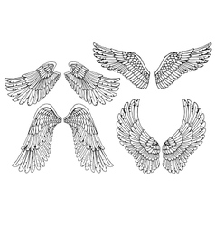Set of four different angel wings vector