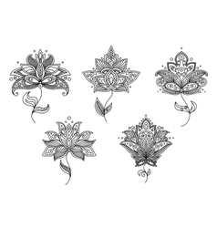 Black and white floral motifs of persian style vector