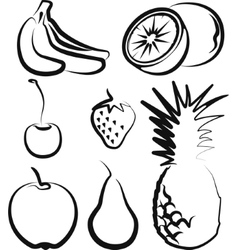 With a set of fruit vector