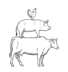 Chicken pork cow farm animals vector