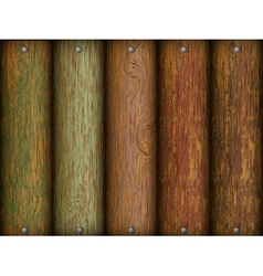 Realistic wood texture vector