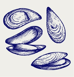 Cooked lipped mussel vector