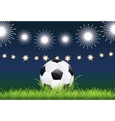 Soccer ball and night stadium vector