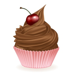 Chocolate cherry cupcake vector