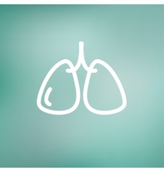 Lungs thin line icon vector