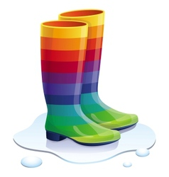 Rubbers boots in rainbow colors vector