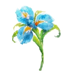 Blue watercolor iris flower vector
