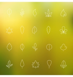 Thin contour icons leaves vector