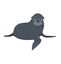 Sea calf vector