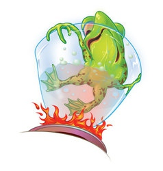Boiling frog syndrome vector
