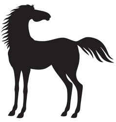 Horse stand vector
