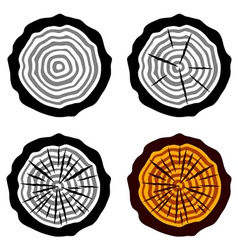 Growth rings tree trunk symbols vector