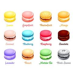 Macaron flavors vector