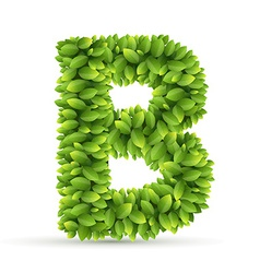 Letter b alphabet of green leaves vector