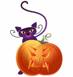 Pumpkin and cat vector