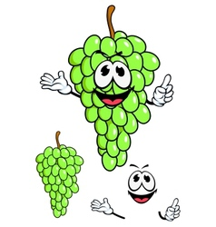 Juicy green grape fruit in cartoon style vector