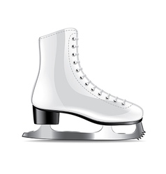 Skates isolated vector