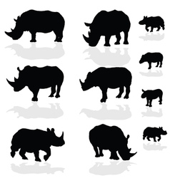 Rhinoceros wils animal black silhouette vector