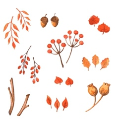 Set of watercolor autumn elements hand drawn vector