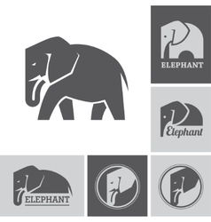 Elephant icons and symbols vector
