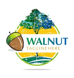 Logo walnut trees hazelnut freshness delicious vector
