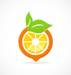 Orange fruit nutrition abstract logo vector