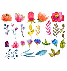 Beautiful watercolor flower set vector