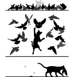 Cat amongst pigeons vector