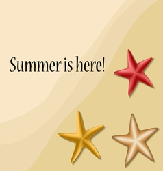 Summer text frame with sea stars vector