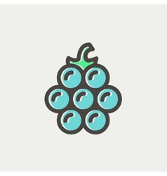 Lanzones fruit thin line icon vector