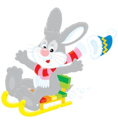 Hare driving in a sled vector