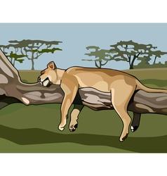 Cartoon lion sleeping on a tree vector